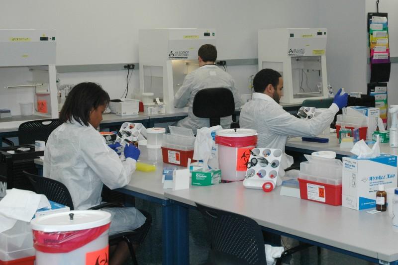 Bs In Biological Sciences College Of Arts Sciences Education Florida International University